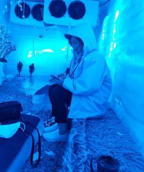 قصر یخ (اهواز)